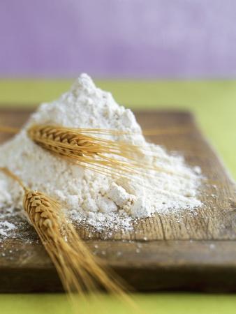 https://imgc.artprintimages.com/img/print/flour-and-wheat-on-cutting-board_u-l-q10spee0.jpg?artPerspective=n