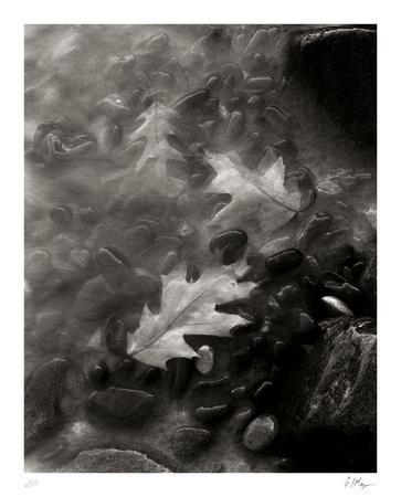 https://imgc.artprintimages.com/img/print/flow_u-l-f7xoop0.jpg?p=0
