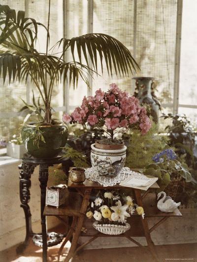 Flower Arrangement-Maynard Owen Williams-Photographic Print