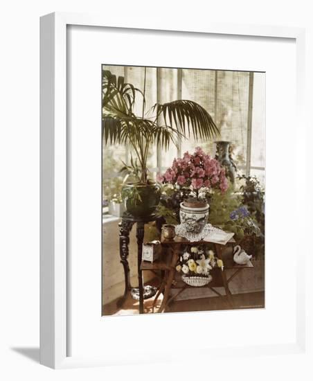 Flower Arrangement-Maynard Owen Williams-Framed Photographic Print