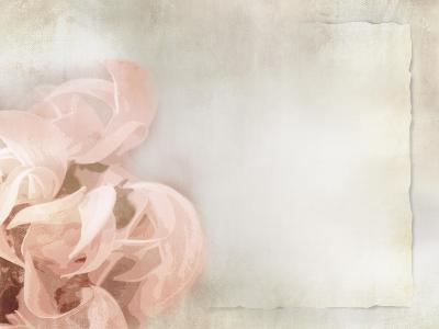 Flower Background in Light Vintage Style on Torn Old Paper Sheet-one AND only-Art Print