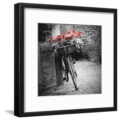 Flower Bike Square-Gail Peck-Framed Art Print