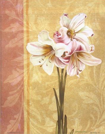 https://imgc.artprintimages.com/img/print/flower-bouquet-ii_u-l-f8ima60.jpg?p=0