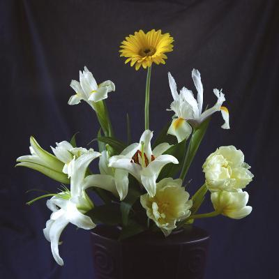 Flower Bouquet-Anna Miller-Photographic Print