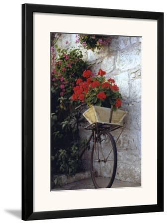 Flower Box Bike-Meg Mccomb-Framed Art Print