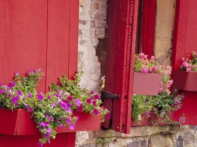 Flower Boxes on Storefronts, Savannah, Georgia, USA-Julie Eggers-Photographic Print