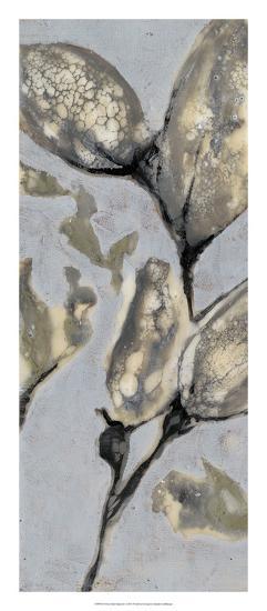 Flower Bud Triptych I-Jennifer Goldberger-Giclee Print