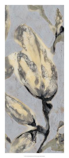 Flower Bud Triptych III-Jennifer Goldberger-Giclee Print