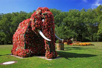 Flower Elephant in Maximilianpark, Hamm, North Rhine-Westphalia, Germany