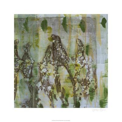 https://imgc.artprintimages.com/img/print/flower-field-ii_u-l-f5q1zx0.jpg?p=0