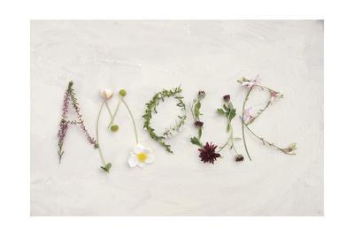 https://imgc.artprintimages.com/img/print/flower-for-amour_u-l-pxkvnx0.jpg?p=0