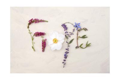 https://imgc.artprintimages.com/img/print/flower-for-hope_u-l-pxkvxg0.jpg?p=0