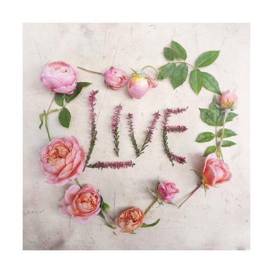 Flower For Live-Heather Johnston-Art Print