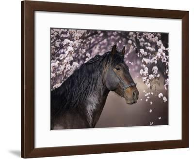 Flower Frolick II-Ozana Sturgeon-Framed Art Print