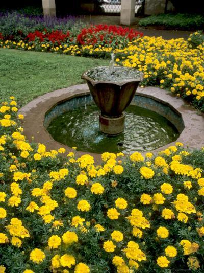 Flower Gardens in Old Town by Rhine River, St Kastor Church, Koblenz, Germany-Bill Bachmann-Photographic Print