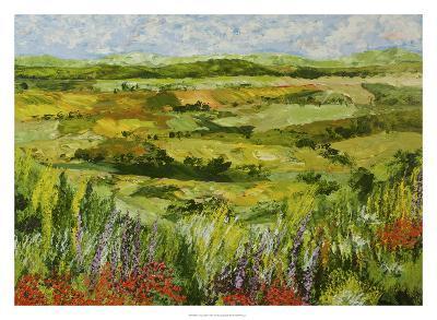 Flower Gate-Allan Friedlander-Premium Giclee Print