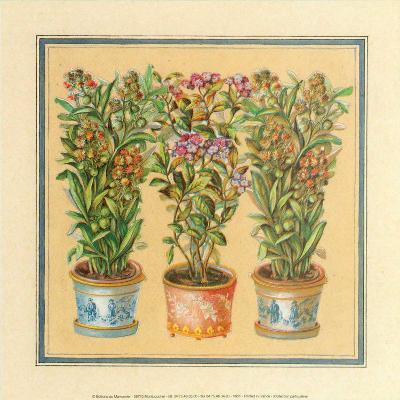 Flower II--Art Print