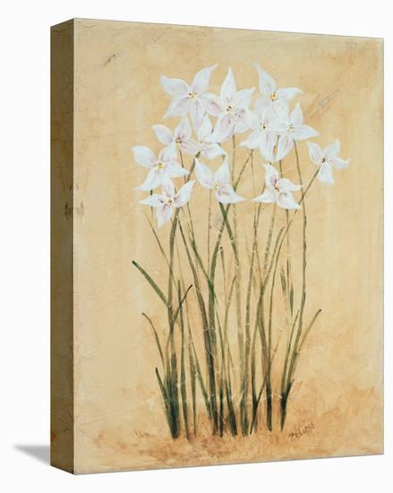 Flower IV-Brigitte Beliose-Stretched Canvas Print