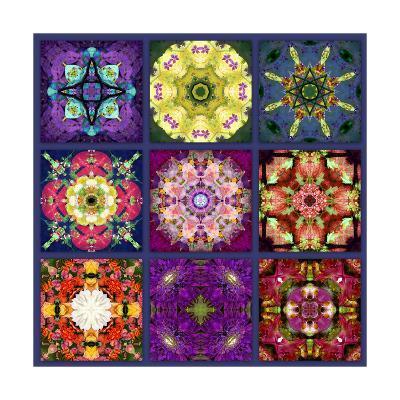 Flower Mandala No 8-Alaya Gadeh-Art Print