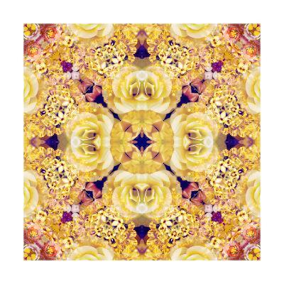 Flower Of The Night XXX-Alaya Gadeh-Art Print