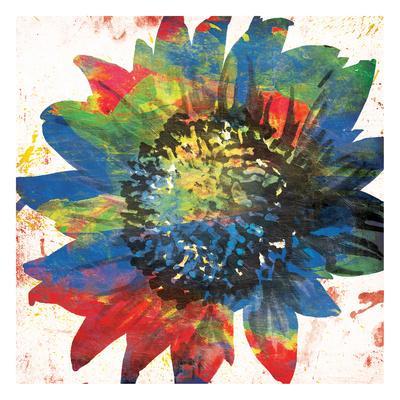 https://imgc.artprintimages.com/img/print/flower-on-the-bright-side_u-l-f8reqg0.jpg?p=0