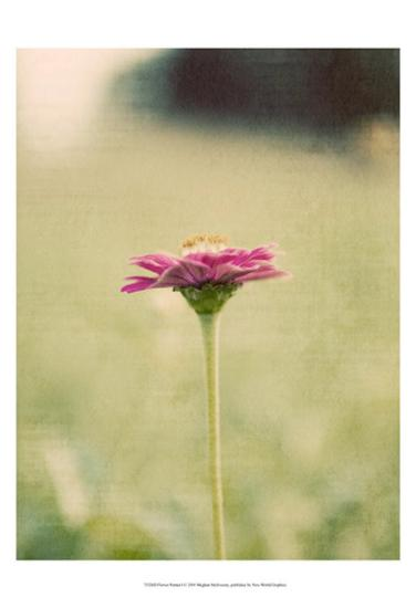 Flower Portrait I-Meghan McSweeney-Art Print