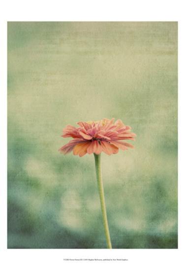 Flower Portrait III-Meghan McSweeney-Art Print