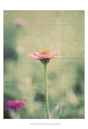 https://imgc.artprintimages.com/img/print/flower-portrait-iv_u-l-f3liyc0.jpg?p=0