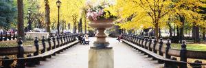 Flower Pot on a Walkway, Central Park, Manhattan, New York City, New York, USA