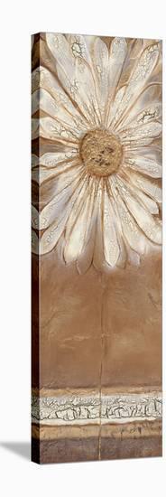 Flower Power II-Kerry Darlington-Stretched Canvas Print