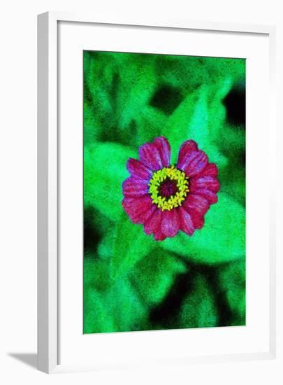 Flower-Andr? Burian-Framed Photographic Print