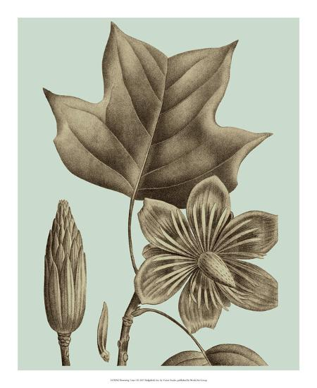 Flowering Trees I-Vision Studio-Giclee Print