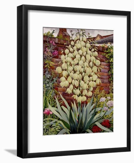 Flowering Yucca-Christopher Ryland-Framed Giclee Print
