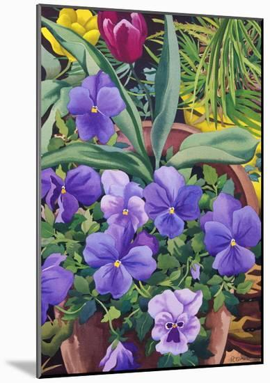 Flowerpots with Pansies, 2007-Christopher Ryland-Mounted Premium Giclee Print