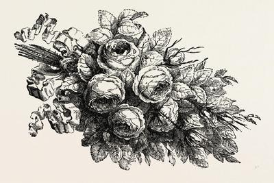 https://imgc.artprintimages.com/img/print/flowers-19th-century_u-l-pvgd7j0.jpg?p=0