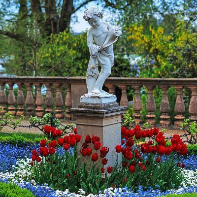 Flowers and a Statue in the Historic Schwerin Palace-Babak Tafreshi-Photographic Print
