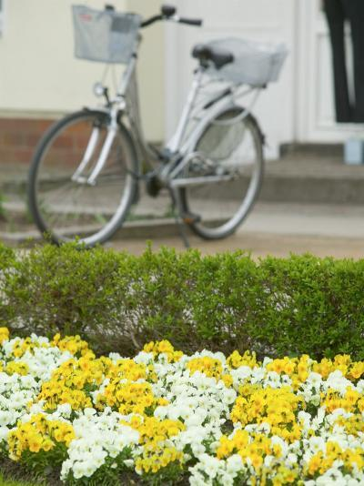 Flowers and Bicycle, Warnemunde, Germany-Russell Young-Photographic Print