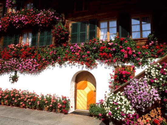 Flowers and Chalet in the Resort Area, Gstaad, Switzerland-Bill Bachmann-Photographic Print