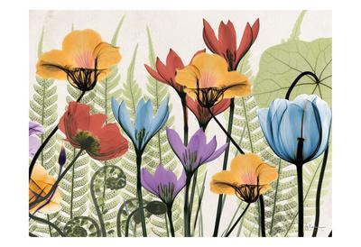 https://imgc.artprintimages.com/img/print/flowers-and-ferns-again_u-l-f547wc0.jpg?p=0