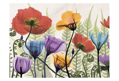 https://imgc.artprintimages.com/img/print/flowers-and-ferns_u-l-f547wb0.jpg?p=0