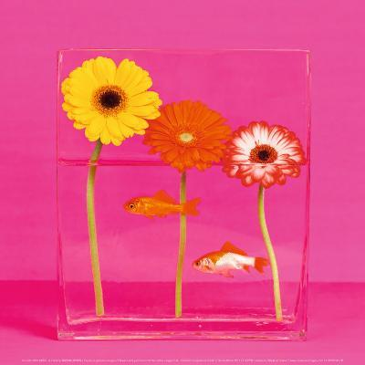 Flowers and Gold Fishes I-Camille Soulayrol-Art Print