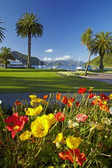 Flowers and Palm Trees, Foreshore Reserve, Picton, Marlborough Sounds, South Island, New Zealand-David Wall-Photographic Print