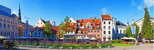 Flowers in a Garden with Buildings in the Background, Riga, Latvia