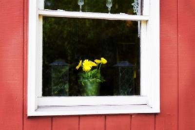 Flowers in a Window I-Alan Hausenflock-Photographic Print