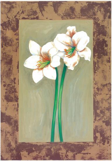 Flowers In Brown Frame IV-Ferrer-Art Print