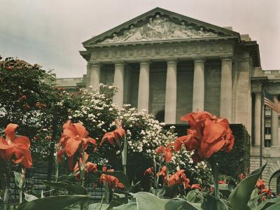 Flowers in Front of a Columned Building in Washington, D.C.-Charles Martin-Photographic Print