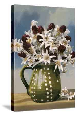 Flowers in Pottery Jug