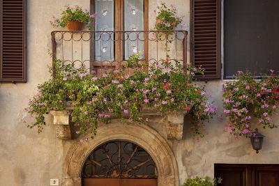 Flowers on Home in Piezna, Tuscany, Italy-Brian Jannsen-Photographic Print