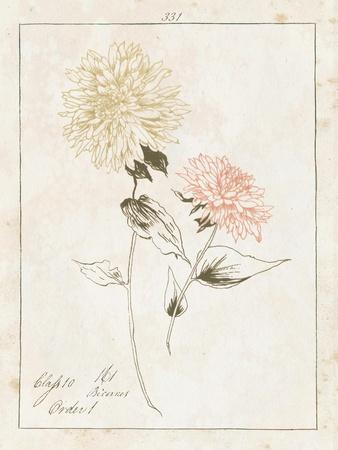 https://imgc.artprintimages.com/img/print/flowers-on-white-iv-with-words_u-l-q1b443f0.jpg?p=0