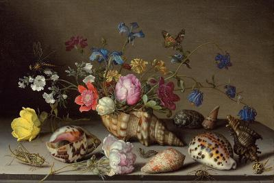 Flowers, Shells and Insects on a Stone Ledge-Balthasar van der Ast-Giclee Print
